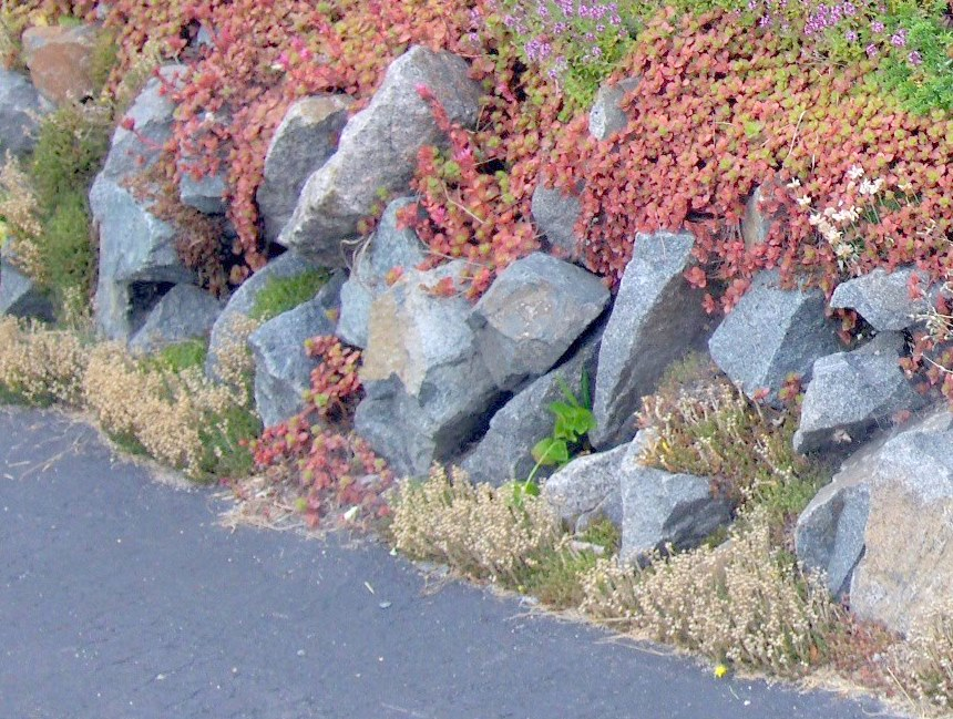 Function and Beauty in a Simple Retaining Wall
