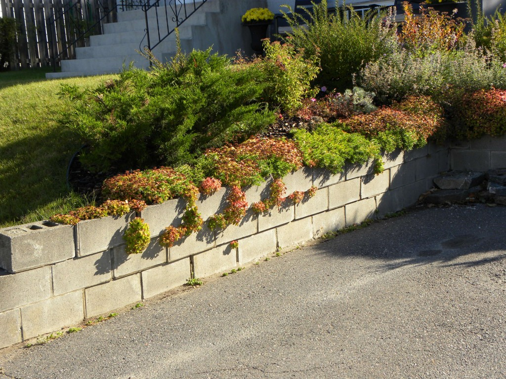 This Retaining Wall is actually built with Concrete Blocks