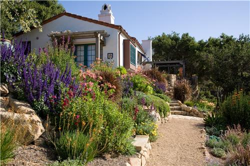 Xeriscape landscaping by Grace Design Associates