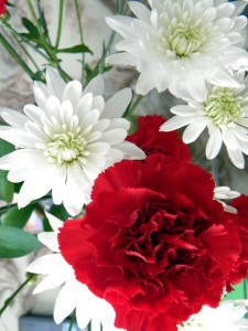 White and Red flowers